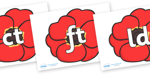 Final Letter Blends on Poppies - Final Letters, final letter, letter blend, letter blends, consonant, consonants, digraph, trigraph, literacy, alphabet, letters, foundation stage literacy