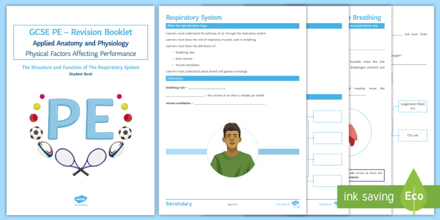Gcse pe the respiratory system revision booklet ks3 ks4 pe gcse pe the respiratory system revision booklet ks3 ks4 pe gcse ccuart Images