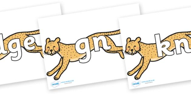 Silent Letters on Cheetahs - Silent Letters, silent letter, letter blend, consonant, consonants, digraph, trigraph, A-Z letters, literacy, alphabet, letters, alternative sounds