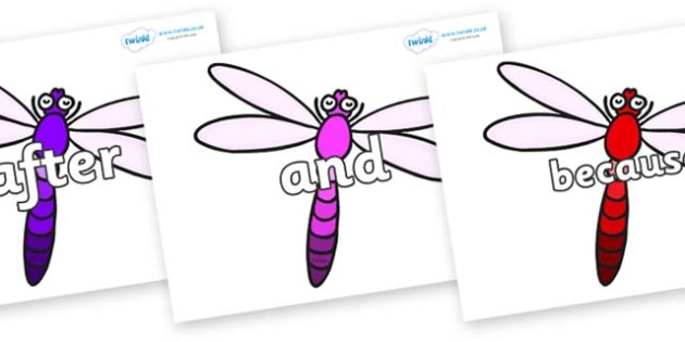 Connectives on Dragonflies - Connectives, VCOP, connective resources, connectives display words, connective displays