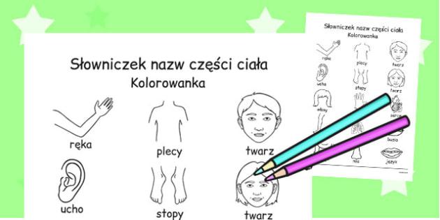 Kolorowanka Słowniczek Moje części ciała po polsku - dzieci , Polish
