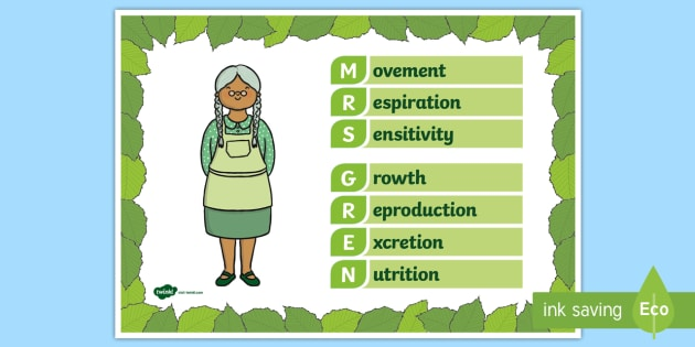 T2 S 001 Mrs Gren Life Processes Display Poster on 001 Picture Puzzle