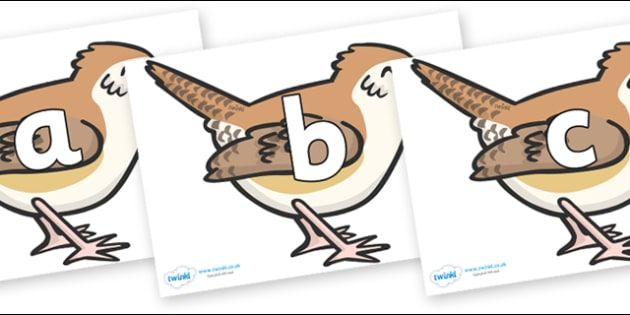 Phoneme Set on Wrens - Phoneme set, phonemes, phoneme, Letters and Sounds, DfES, display, Phase 1, Phase 2, Phase 3, Phase 5, Foundation, Literacy
