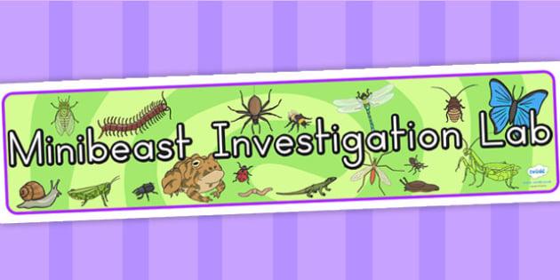 Minibeasts Investigation Lab Roleplay Display Banner - header