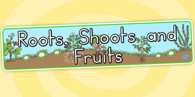 Roots Shoots and Fruits Display Banner - Australia, Roots, Fruits