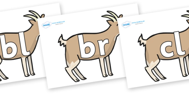 Initial Letter Blends on Goats - Initial Letters, initial letter, letter blend, letter blends, consonant, consonants, digraph, trigraph, literacy, alphabet, letters, foundation stage literacy