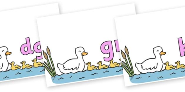 Silent Letters on Five Little Ducks - Silent Letters, silent letter, letter blend, consonant, consonants, digraph, trigraph, A-Z letters, literacy, alphabet, letters, alternative sounds