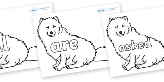 Tricky Words on Arctic Foxes - Tricky words, DfES Letters and Sounds, Letters and sounds, display, words