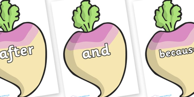 Connectives on Turnips - Connectives, VCOP, connective resources, connectives display words, connective displays