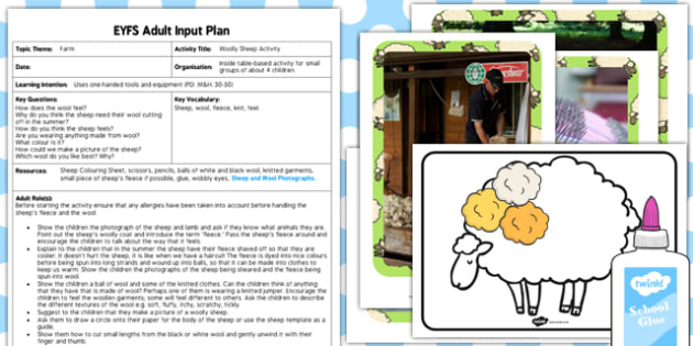 Woolly Sheep Activity EYFS Adult Input Plan And Resource Pack - planning, activities