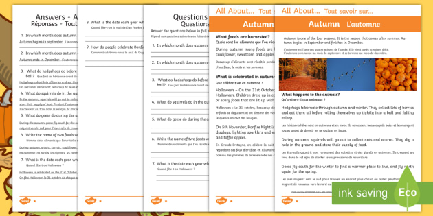 Autumn Differentiated Reading Comprehension Worksheet / Activity