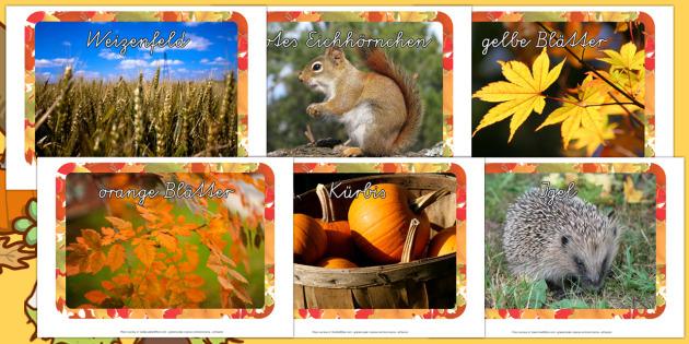 Herbst Fotos Poster DIN A4