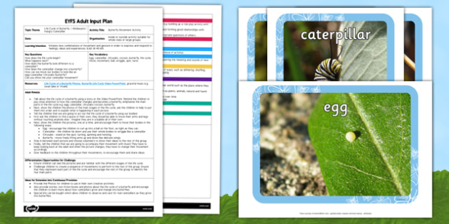 Butterfly Movement Activity EYFS Adult Input Plan And Resource Pack - animal