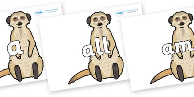 Foundation Stage 2 Keywords on Meerkats - FS2, CLL, keywords, Communication language and literacy,  Display, Key words, high frequency words, foundation stage literacy, DfES Letters and Sounds, Letters and Sounds, spelling