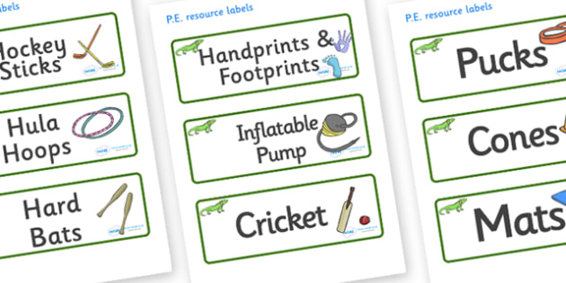 Iguana Themed Editable PE Resource Labels - Themed PE label, PE equipment, PE, physical education, PE cupboard, PE, physical development, quoits, cones, bats, balls, Resource Label, Editable Labels, KS1 Labels, Foundation Labels, Foundation Stage Lab