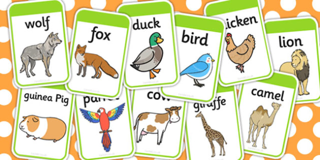 how to play animal card game