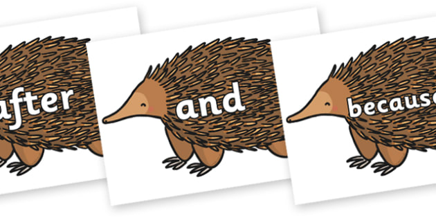 Connectives on Echidna - Connectives, VCOP, connective resources, connectives display words, connective displays