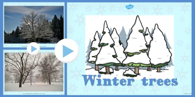 Winter Trees Photo PowerPoint - winter, trees, photo, powerpoint