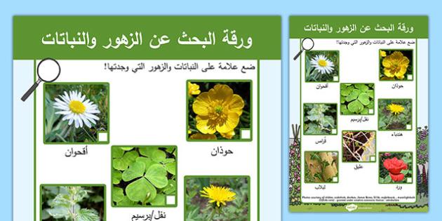 ورقة البحث عن النباتات والزهور - النباتات، الزهور، وسائل، موارد
