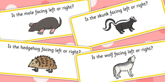 Right And Left Animal Cards - visual aid, class management