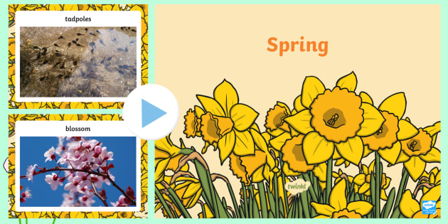 EYFS Spring Photo PowerPoint - season, weather, discussion prompt