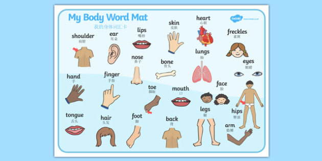 My Body Word Mat Mandarin Chinese Translation - mandarin chinese, Parts of the body, eyes, nose, mouth, back, chest, tongue, ourselves, all about me, my body, senses, emotions, family, body, growth