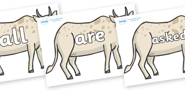 Tricky Words on African Ox - Tricky words, DfES Letters and Sounds, Letters and sounds, display, words