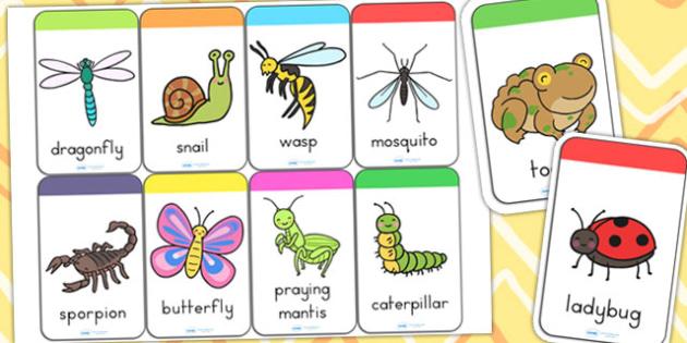 Minibeasts Cute Flashcards - flash card, word cards, visual aids