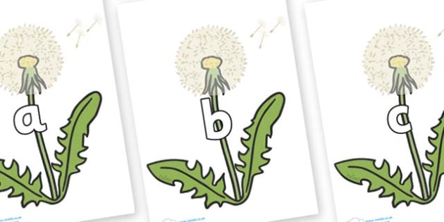 Phase 2 Phonemes on Dandelion Seeds - Phonemes, phoneme, Phase 2, Phase two, Foundation, Literacy, Letters and Sounds, DfES, display