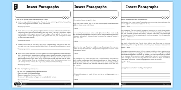 Paragraphs - Insects Differentiated Activity Sheet Pack - GPS, sentence, text, cohesion, reading, worksheet