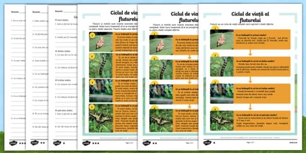 Ciclul de viață al fluturelui - Fișă de lectură diferențiată