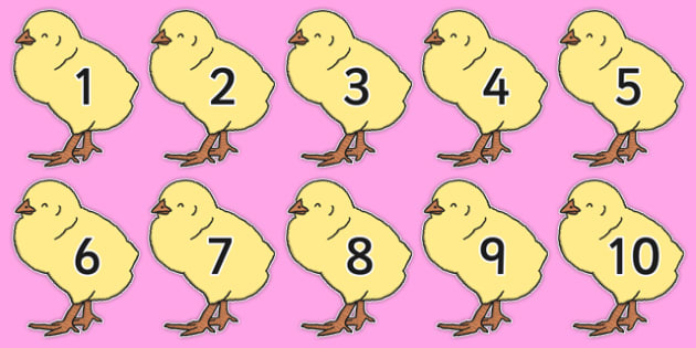 Numbers 0-50 on Chicks - numbers, 0-50, chicks, easter, animals, chicken
