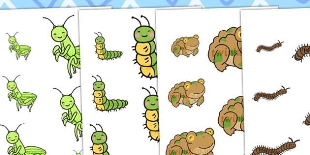 Minibeasts Size Ordering - size order, order, sort, sorting