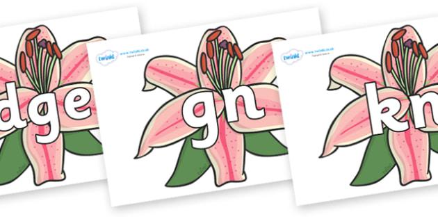 Silent Letters on Lilies - Silent Letters, silent letter, letter blend, consonant, consonants, digraph, trigraph, A-Z letters, literacy, alphabet, letters, alternative sounds