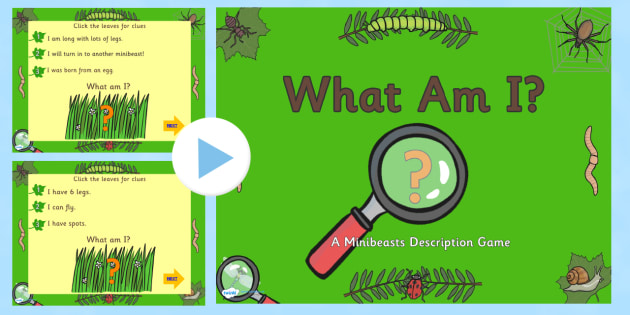 EYFS Minibeasts What Am I Interactive PowerPoint Game - minibeast