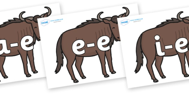 Modifying E Letters on Wildebeests - Modifying E, letters, modify, Phase 5, Phase five, alternative spellings for phonemes, DfES letters and Sounds