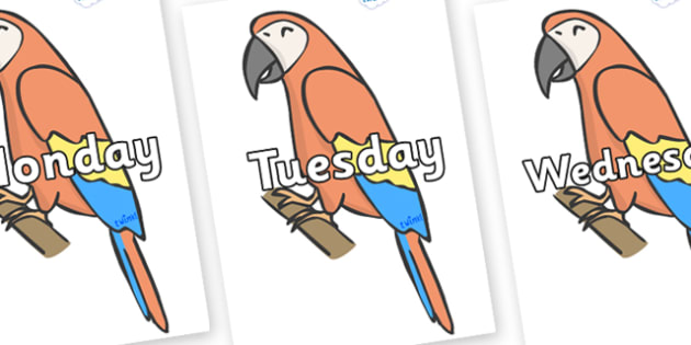 Days of the Week on Parrots - Days of the Week, Weeks poster, week, display, poster, frieze, Days, Day, Monday, Tuesday, Wednesday, Thursday, Friday, Saturday, Sunday