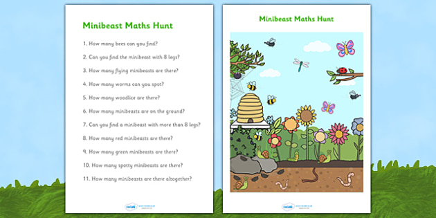 Minibeasts Counting and Questions Worksheet - minibeast counting sheets, minibeast question sheets, minibeast worksheet, minibeast counting activity, counting