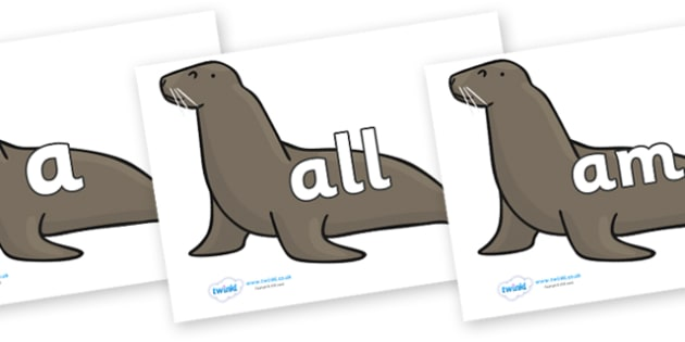 Foundation Stage 2 Keywords on Sealions - FS2, CLL, keywords, Communication language and literacy,  Display, Key words, high frequency words, foundation stage literacy, DfES Letters and Sounds, Letters and Sounds, spelling