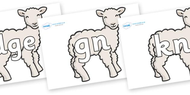 Silent Letters on Lambs - Silent Letters, silent letter, letter blend, consonant, consonants, digraph, trigraph, A-Z letters, literacy, alphabet, letters, alternative sounds