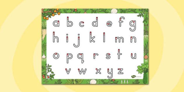 Grow Your Own Vegetables Themed Letter Writing Sheet - australia