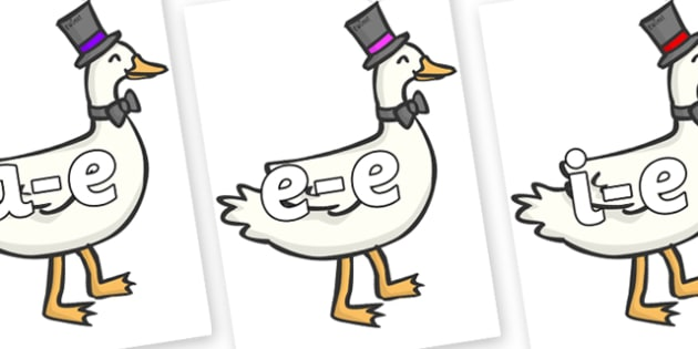 Modifying E Letters on Goose - Modifying E, letters, modify, Phase 5, Phase five, alternative spellings for phonemes, DfES letters and Sounds
