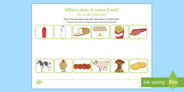 where does food come from worksheet activity sheet. Black Bedroom Furniture Sets. Home Design Ideas