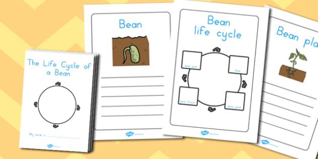 Bean Growth Workbook - australia, bean, growth, workbook, book