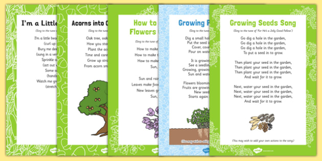 Plants and Growth Themed Songs and Rhymes Resource Pack - plant, seed, fruit, life cycle, tune, flower
