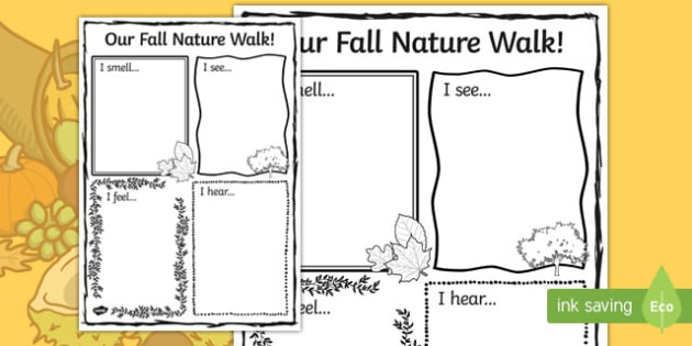 Our Fall Nature Walk
