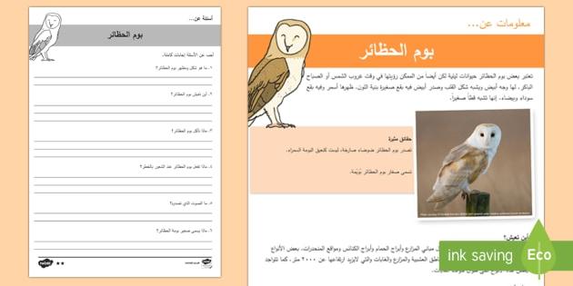 بوم الحظائر- أوراق عمل للفهم القرائي - بوم، بومة، البوم، البومة، بوم الحظائر، حيوانات ليلية،