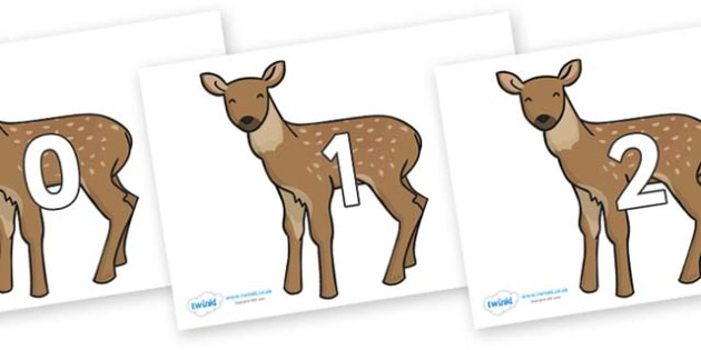Numbers 0-31 on Fawns - 0-31, foundation stage numeracy, Number recognition, Number flashcards, counting, number frieze, Display numbers, number posters