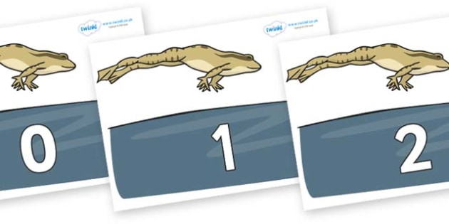 Numbers 0-31 on Frog - 0-31, foundation stage numeracy, Number recognition, Number flashcards, counting, number frieze, Display numbers, number posters