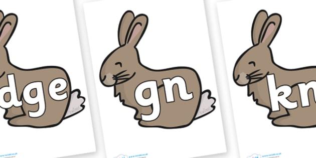 Silent Letters on Rabbits - Silent Letters, silent letter, letter blend, consonant, consonants, digraph, trigraph, A-Z letters, literacy, alphabet, letters, alternative sounds